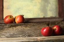 """Poster """"Äpfel"""""""