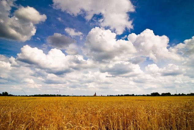 """Wallprint """"cloudy"""""""