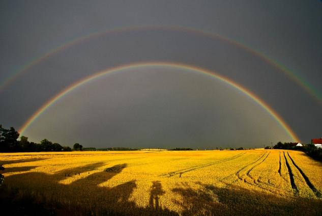 """Poster """"double rainbow"""""""