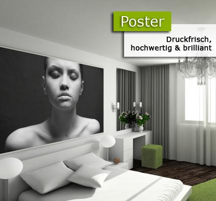 posterdesigner online bei print it all kaufen. Black Bedroom Furniture Sets. Home Design Ideas