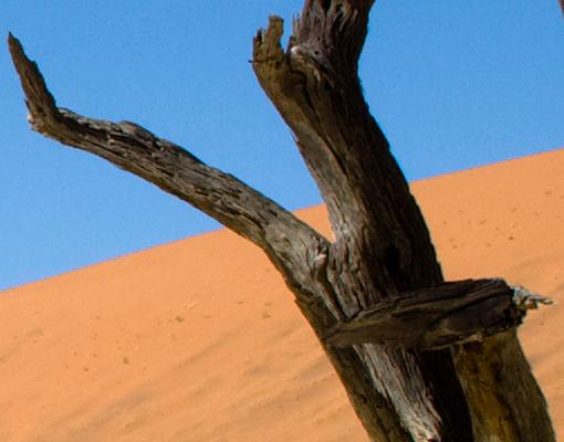 Mehrteilige Bilder Kuche : Wallprint Das Sossusvlei in Namibia S  54cm x 36cm online bei Print